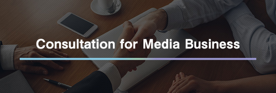 Consultation for Media Business